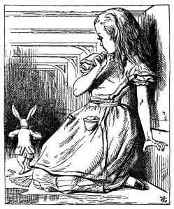 alice in the rabbit hole1